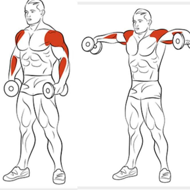 shoulder exercise 1