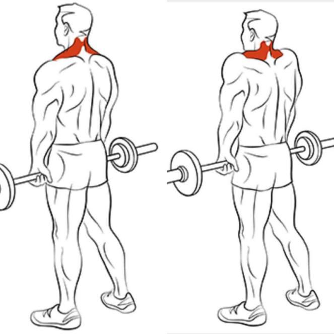shoulder exercise 5
